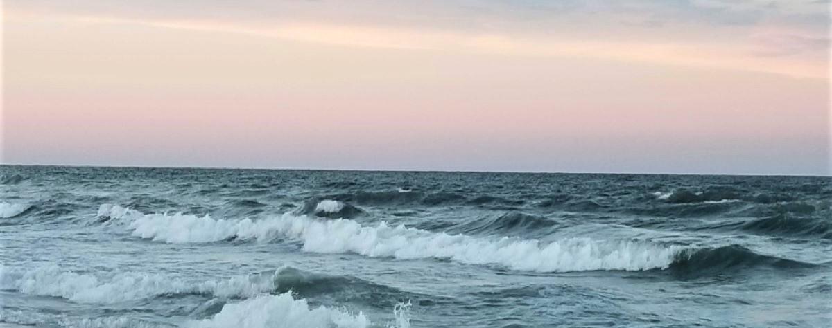 wavespic1200x1200clear